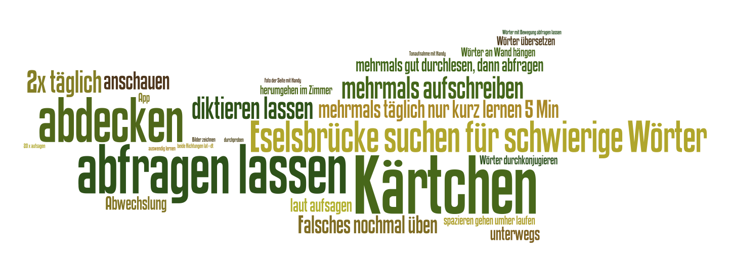 Wordle: Lernstrategie